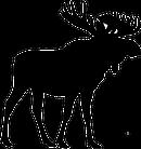 great_north_interior_design_moose